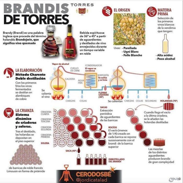 Los Brandis Bodegas Torres